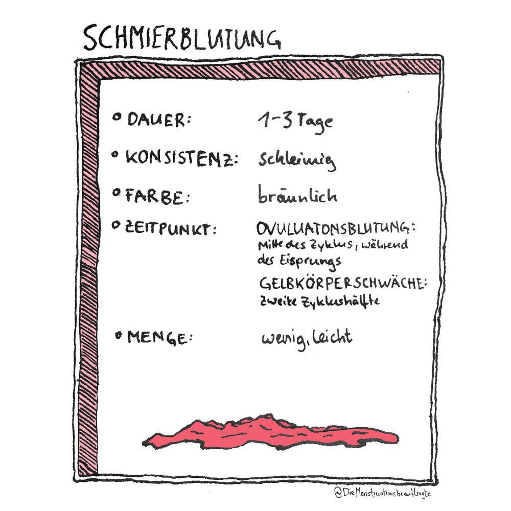 3. Blutungsarten_© Die Menstruationsbeauftragte