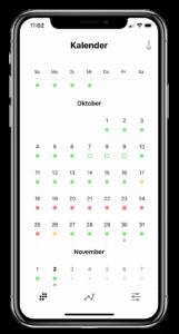 Daysy App